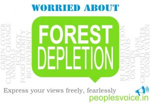 Forest Depletion